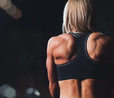 sport suplemeti training